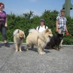 Baluba på besøg hos Arikarion i Wien